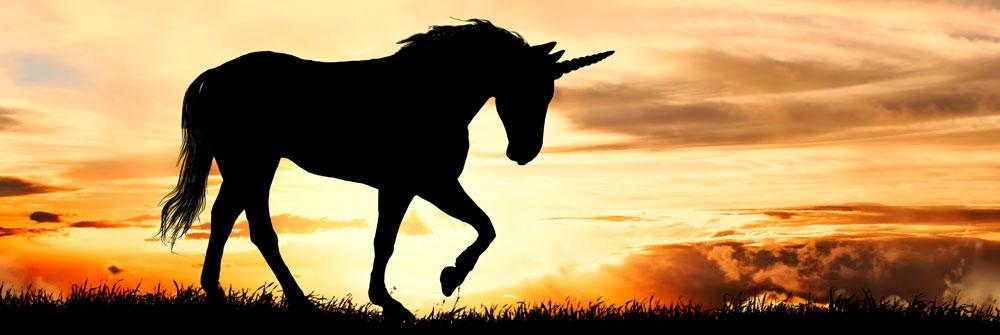 Unicorn Fotobehang