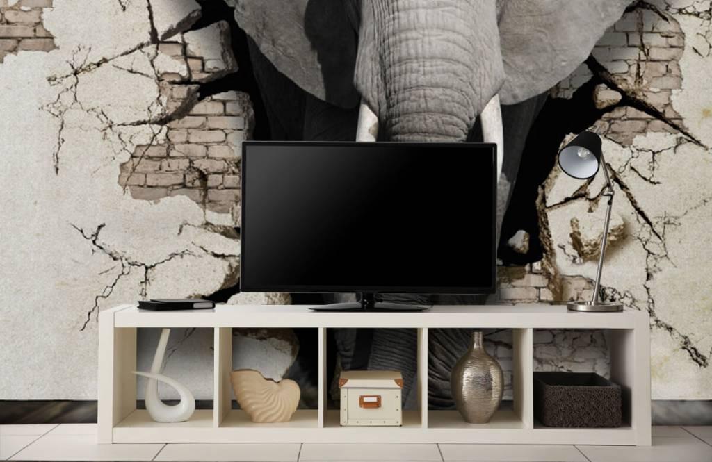 Dieren - 3D Olifant uit de muur - Tienerkamer 3