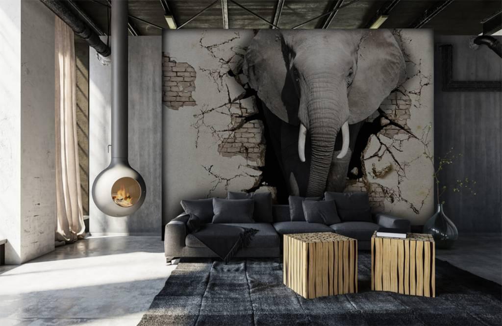 Dieren - 3D Olifant uit de muur - Tienerkamer 6