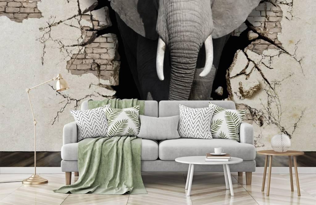 Dieren - 3D Olifant uit de muur - Tienerkamer 7