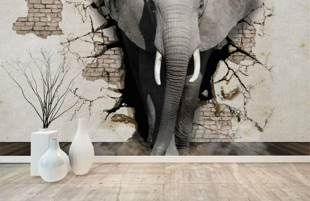 Dieren - 3D Olifant uit de muur - Tienerkamer 8