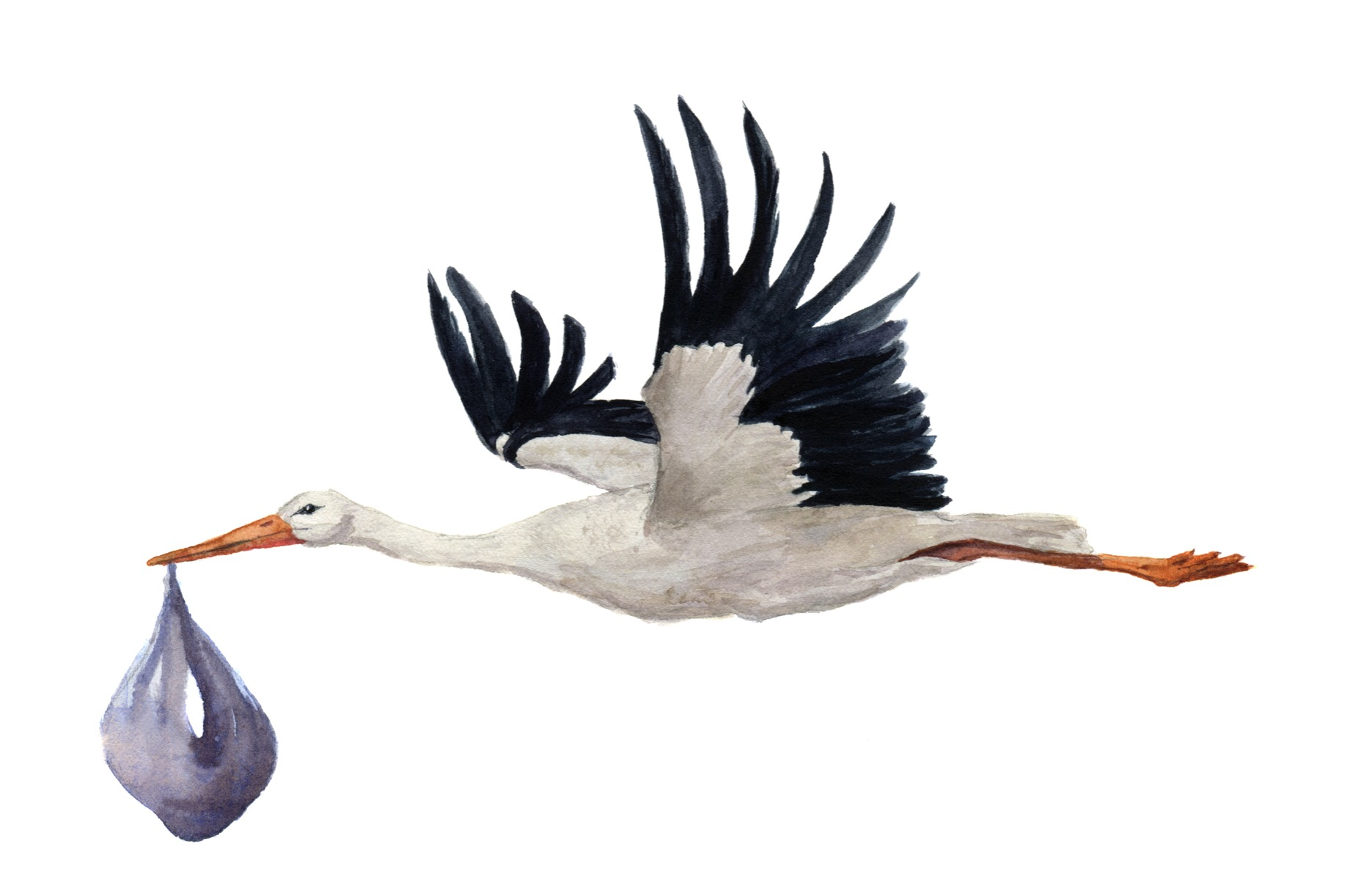 Overige - Vliegende ooievaar - Babykamer 7