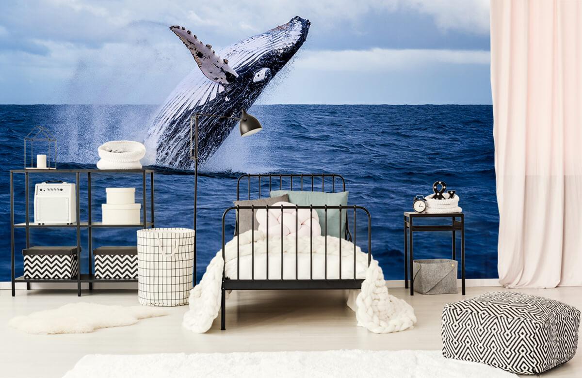 Zeedieren - Springende walvis - Tienerkamer 1