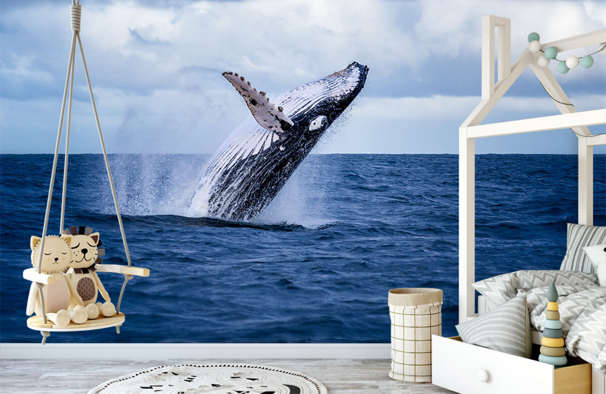 Zeedieren - Springende walvis - Tienerkamer 3