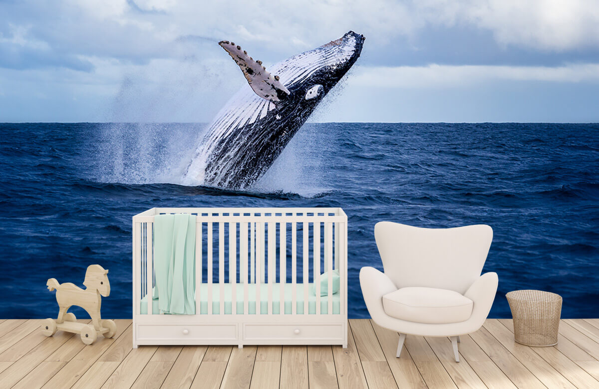 Zeedieren - Springende walvis - Tienerkamer 5