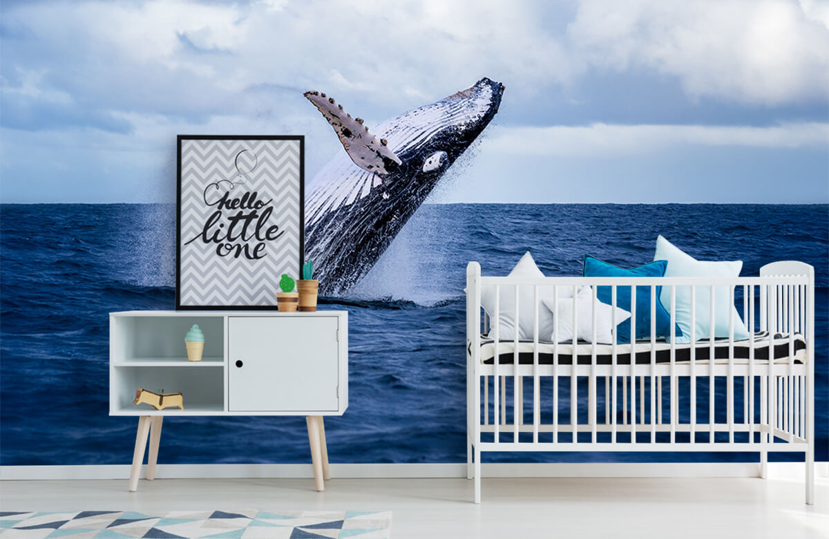 Zeedieren - Springende walvis - Tienerkamer 6
