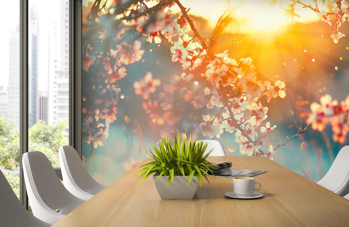 Bloesem - Bloesem in het voorjaar - Slaapkamer 1