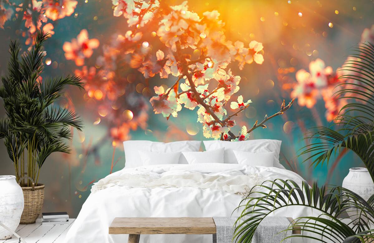 Bloesem - Bloesem in het voorjaar - Slaapkamer 6