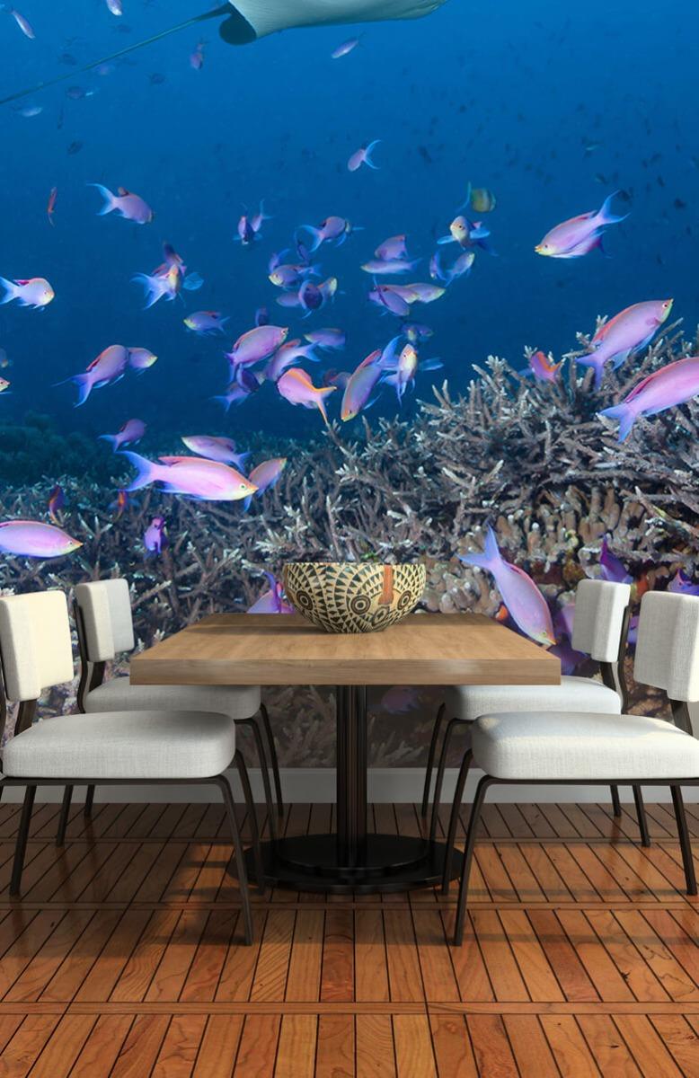 Dieren Pijlstaartrog tussen koraal 5