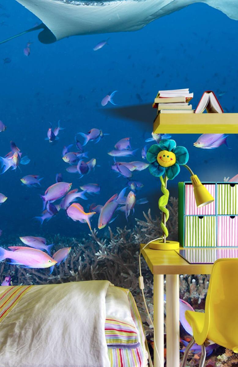 Dieren Pijlstaartrog tussen koraal 7