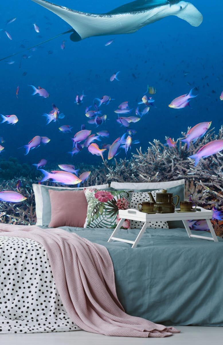 Dieren Pijlstaartrog tussen koraal 12