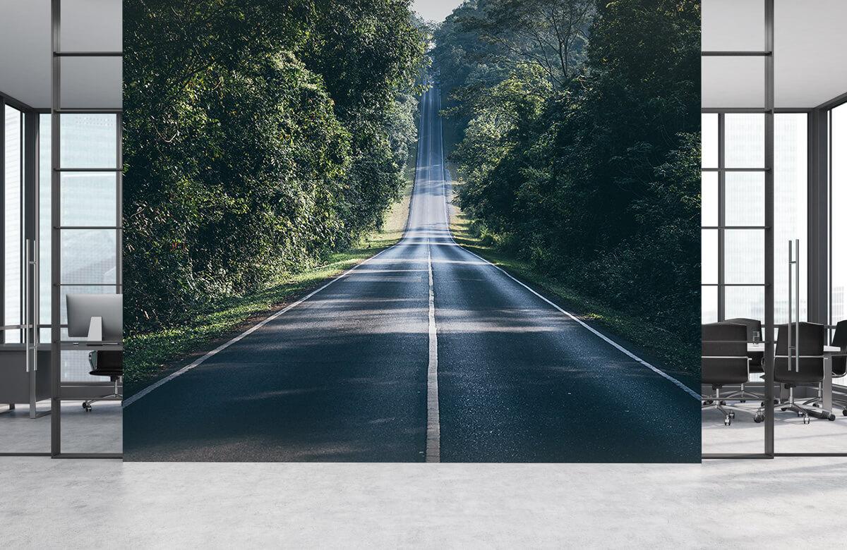 Wegen & Straten - Weg door de natuur - Hal 1