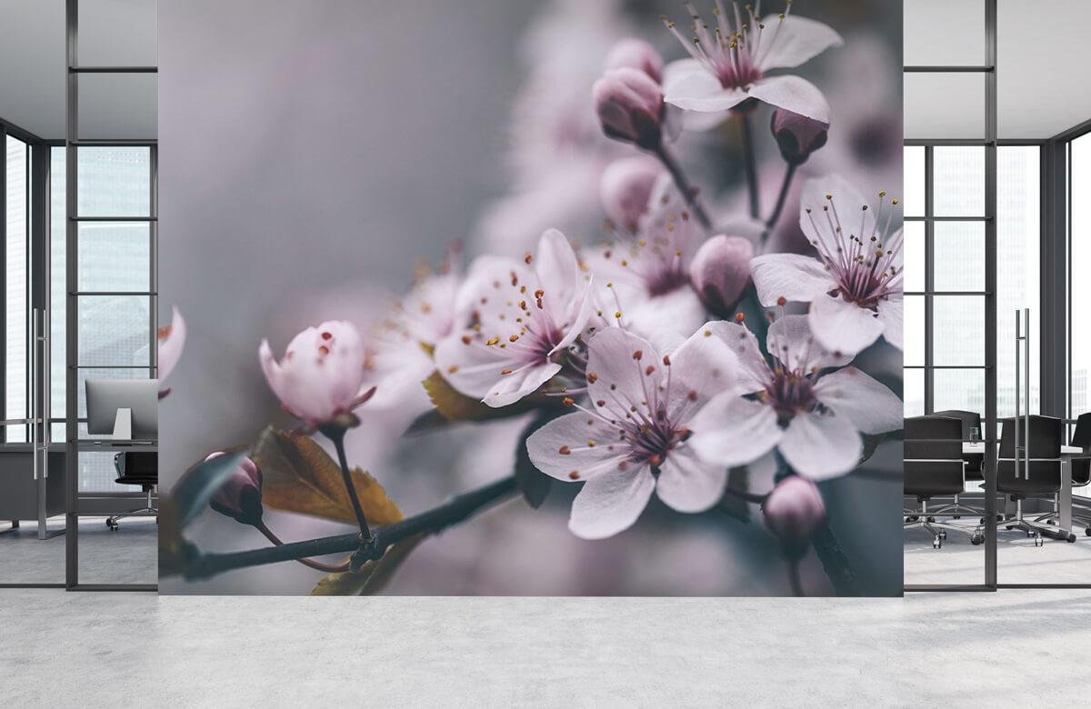 Bloesem - Voorjaarsbloesem - Slaapkamer 3