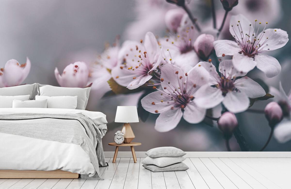 Bloesem - Voorjaarsbloesem - Slaapkamer 7