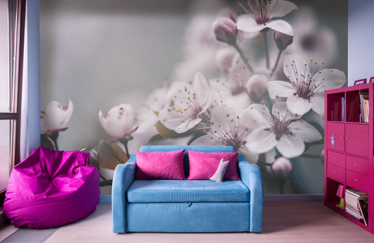 Bloesem - Voorjaarsbloesem - Slaapkamer 10
