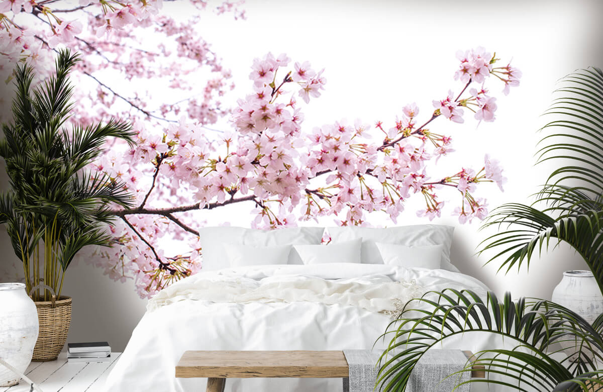 Bloesem - Roze bloesem takken - Woonkamer 7