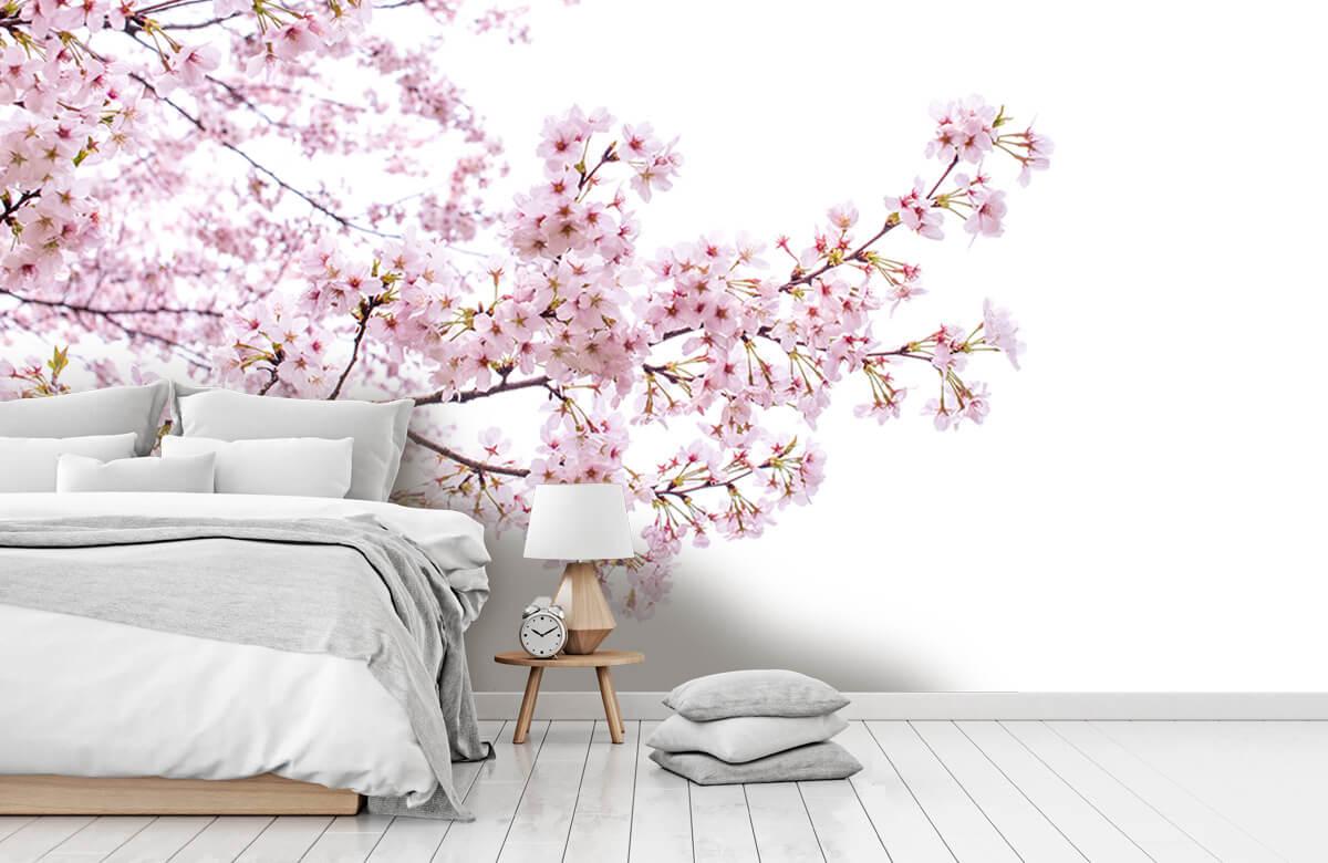 Bloesem - Roze bloesem takken - Woonkamer 8