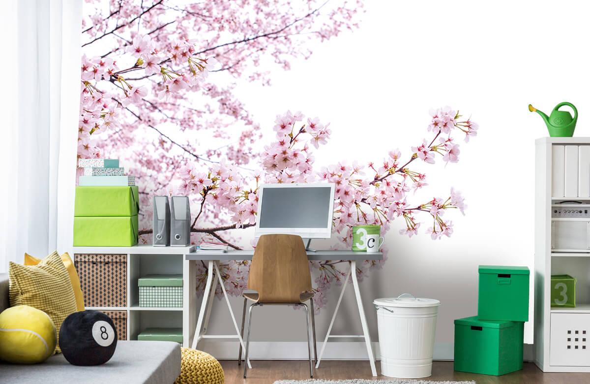 Bloesem - Roze bloesem takken - Woonkamer 10