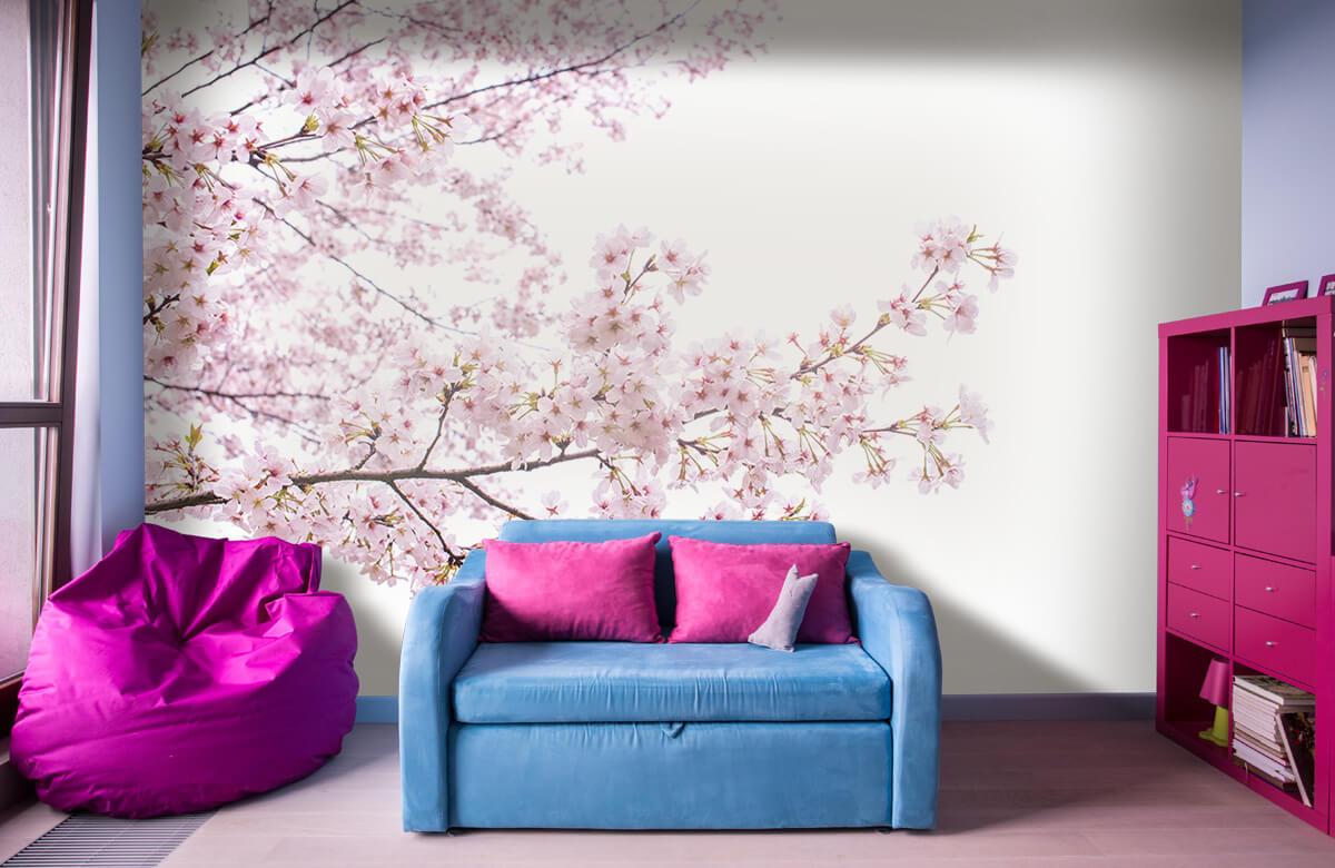 Bloesem - Roze bloesem takken - Woonkamer 11