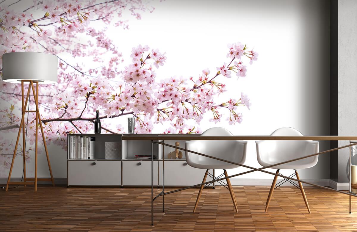 Bloesem - Roze bloesem takken - Woonkamer 1