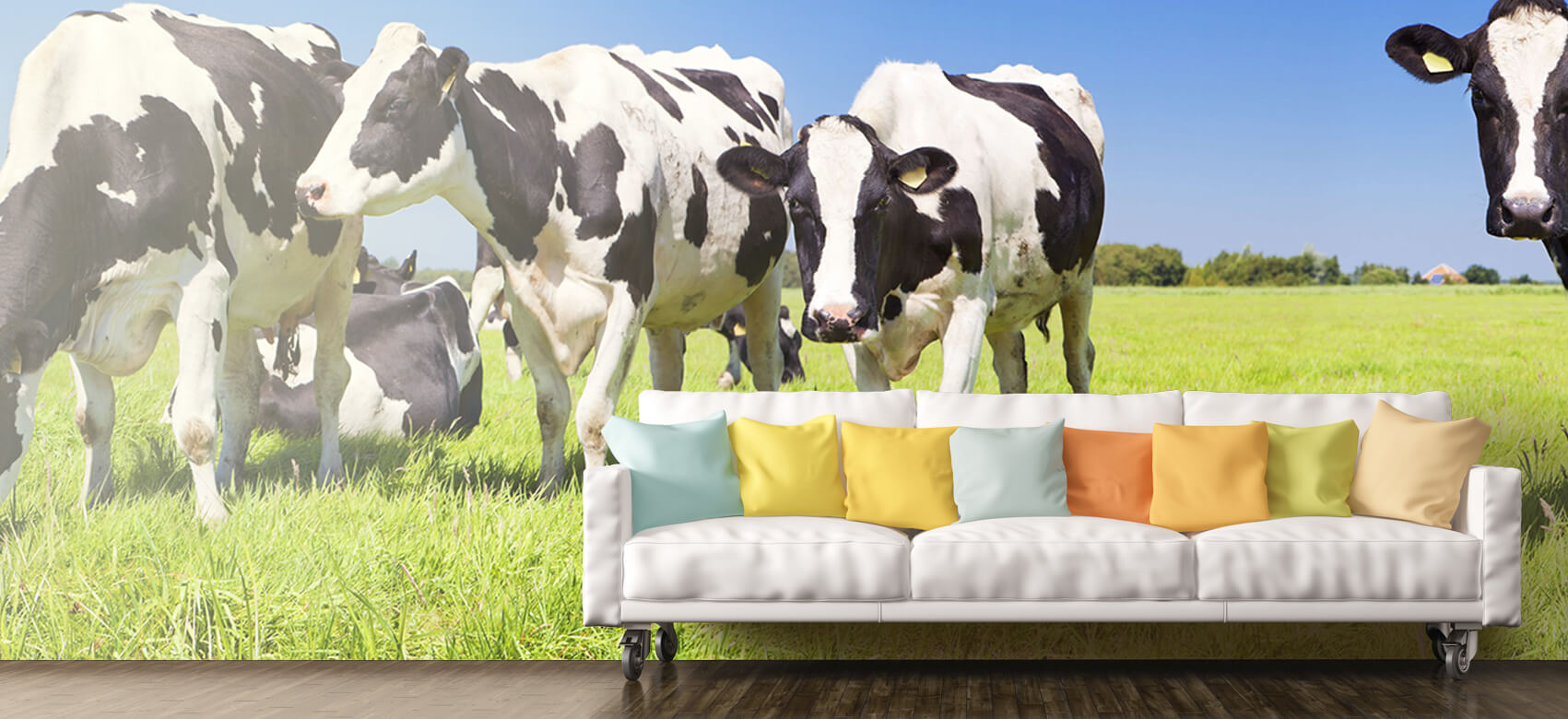 Dieren Fotobehang koeien 10