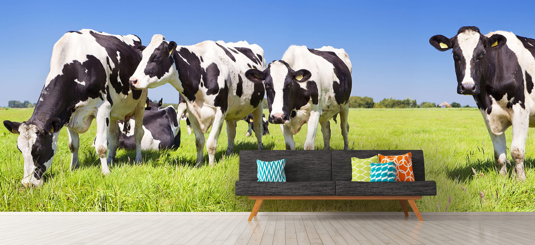 Dieren Fotobehang koeien 12