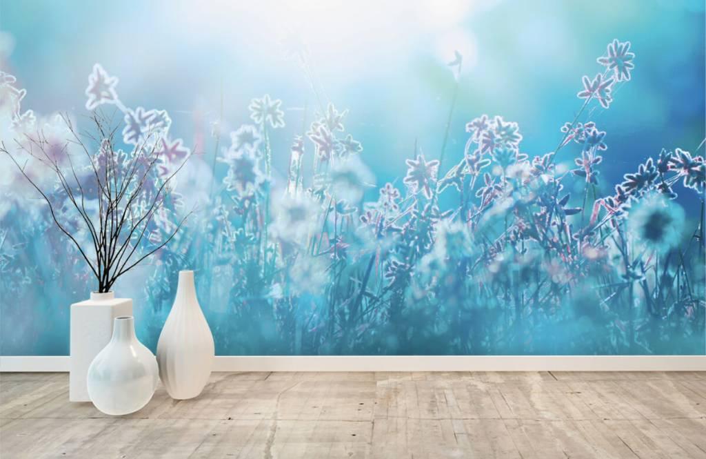 Bloemenvelden - Bloemen in de zon - Slaapkamer 1
