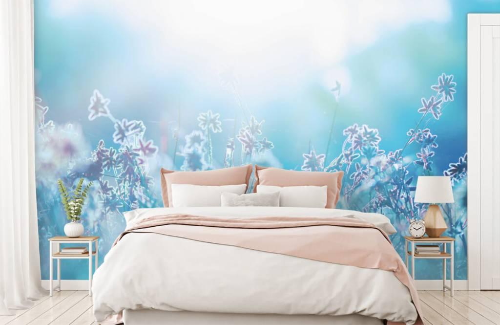 Bloemenvelden - Bloemen in de zon - Slaapkamer 2