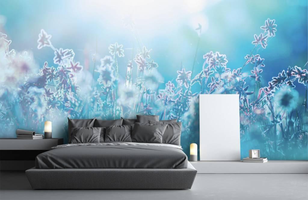Bloemenvelden - Bloemen in de zon - Slaapkamer 5