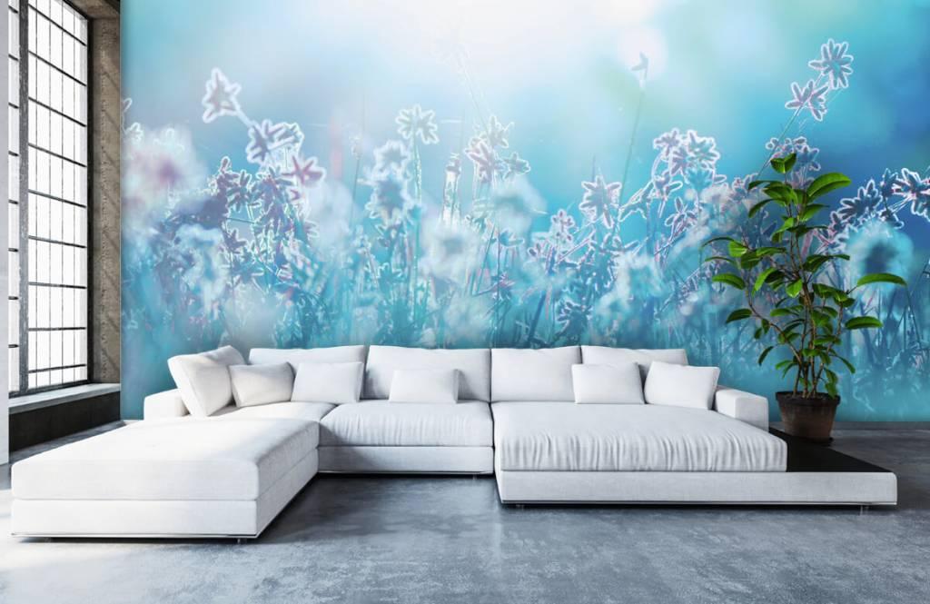 Bloemenvelden - Bloemen in de zon - Slaapkamer 6