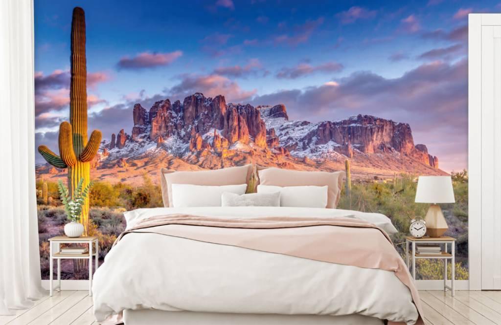 Fotobehang Cactus in een berglandschap
