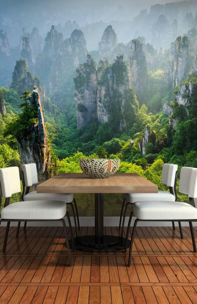 Bergen - Jungle van bovenaf - Tienerkamer 5