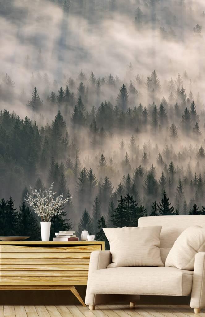 Bos behang - Dennenbomen en mist - Slaapkamer 1