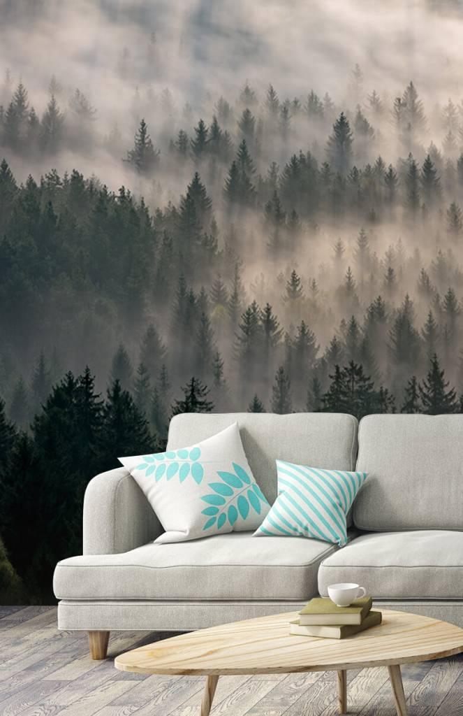 Bos behang - Dennenbomen en mist - Slaapkamer 2