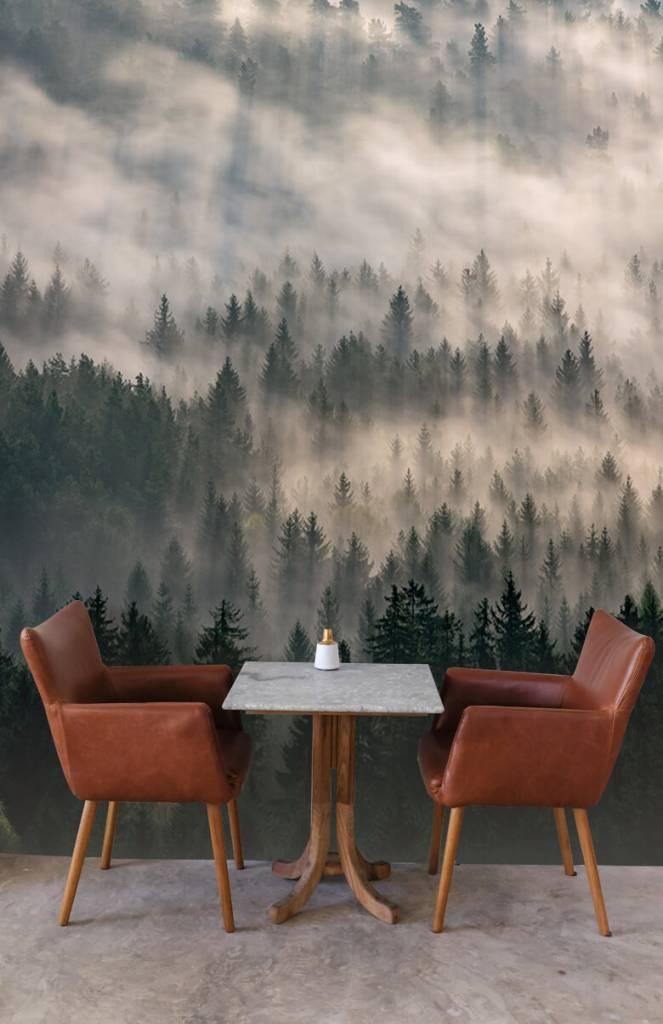 Bos behang - Dennenbomen en mist - Slaapkamer 3