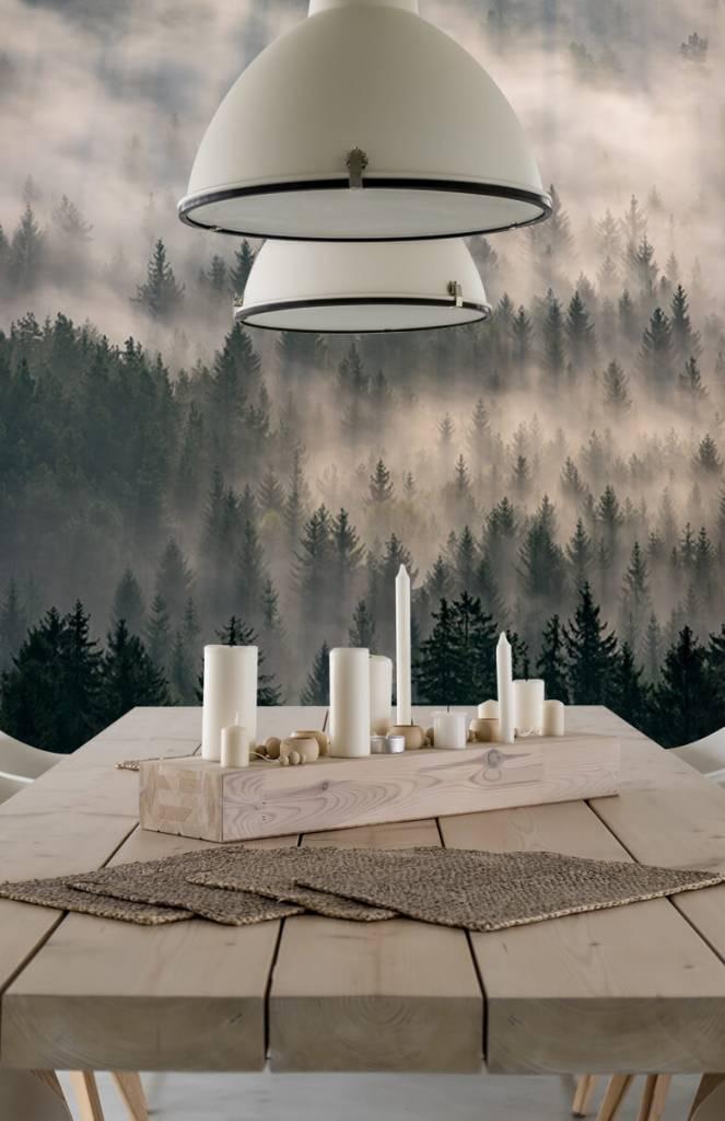 Bos behang - Dennenbomen en mist - Slaapkamer 4