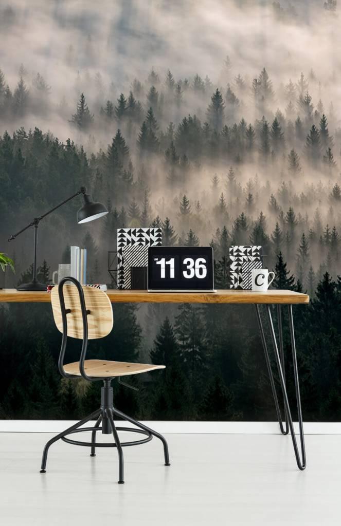 Bos behang - Dennenbomen en mist - Slaapkamer 6