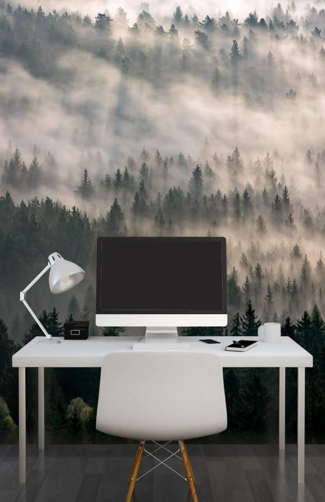 Bos behang - Dennenbomen en mist - Slaapkamer 7