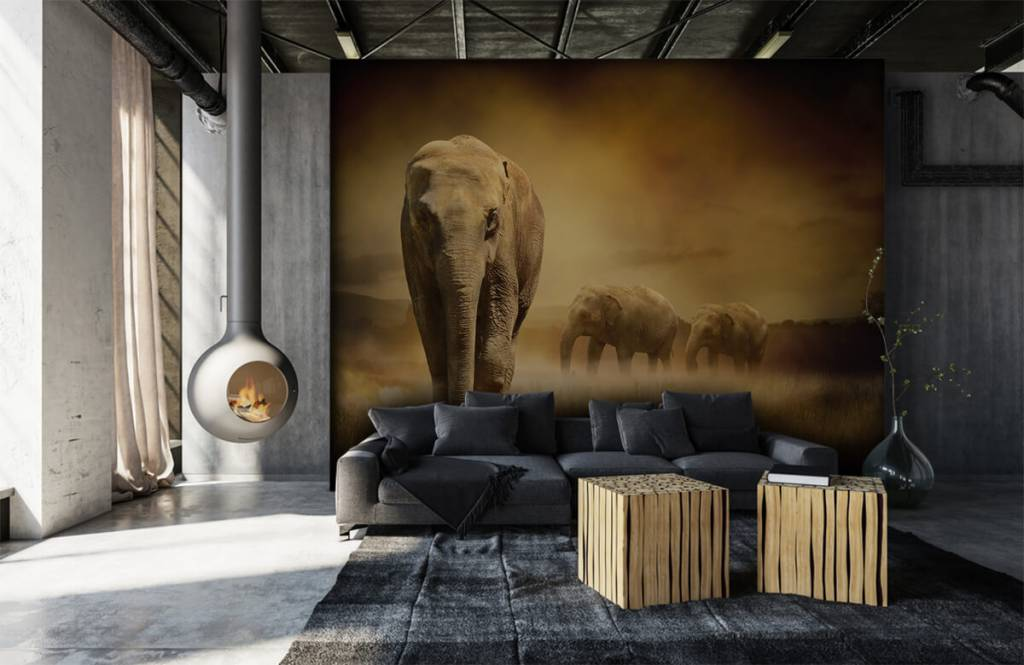 Dieren - Drie olifanten - Tienerkamer 1