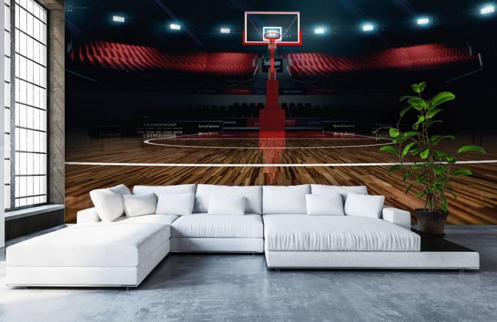 Overige - Basketbal arena - Hobbykamer 6