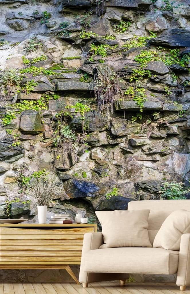 Steen behang - Begroeide muur - Woonkamer 2