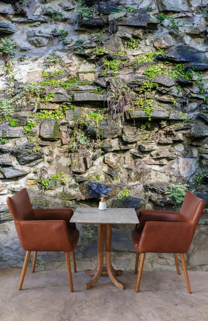 Steen behang - Begroeide muur - Woonkamer 3