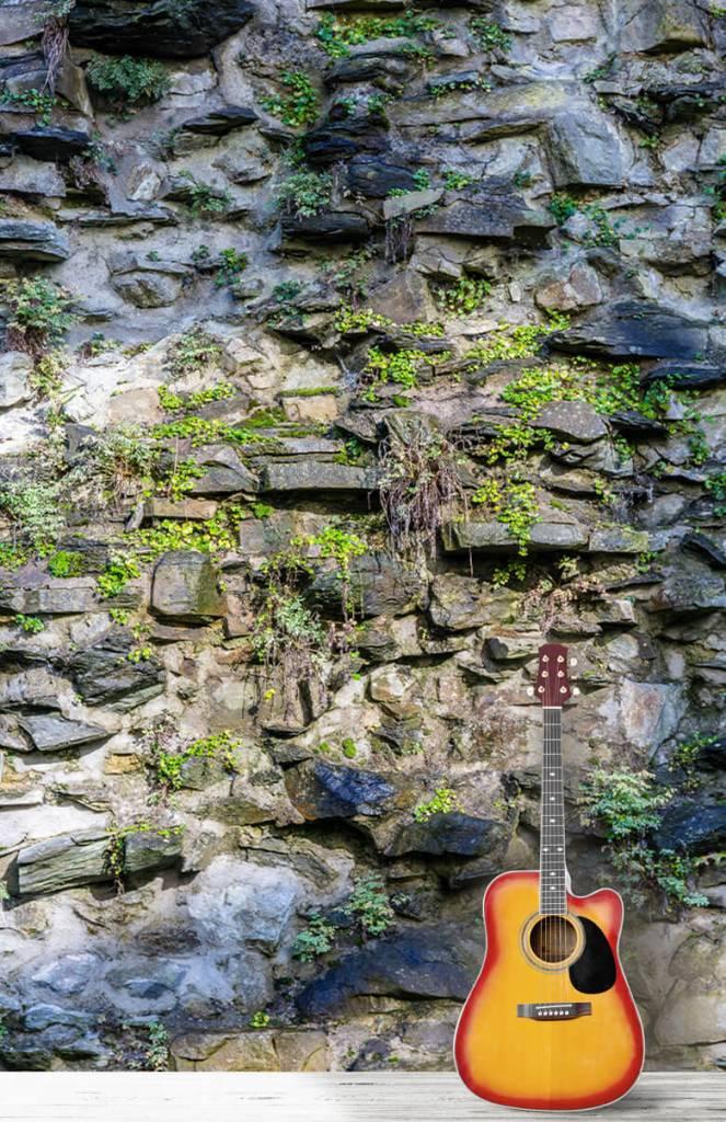 Steen behang - Begroeide muur - Woonkamer 7