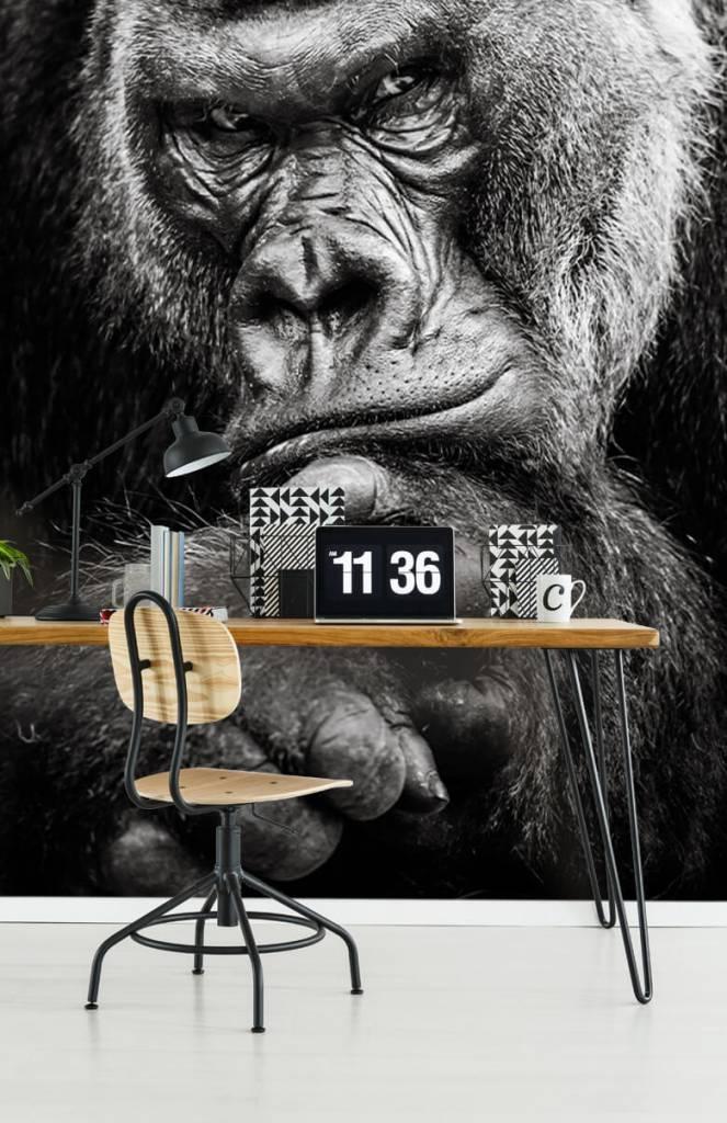Zwart Wit behang - Close-up foto van een gorilla - Tienerkamer 1