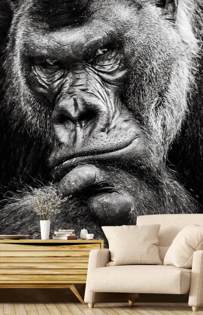 Zwart Wit behang - Close-up foto van een gorilla - Tienerkamer 2