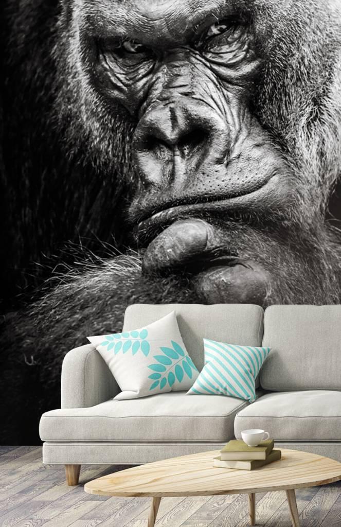 Zwart Wit behang - Close-up foto van een gorilla - Tienerkamer 3