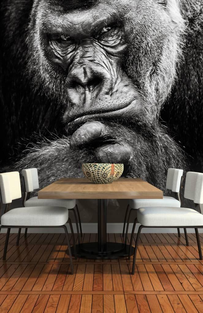 Zwart Wit behang - Close-up foto van een gorilla - Tienerkamer 4