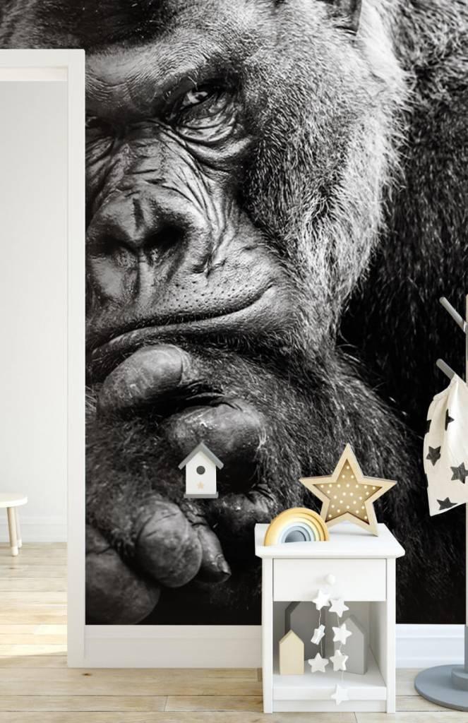 Zwart Wit behang - Close-up foto van een gorilla - Tienerkamer 5