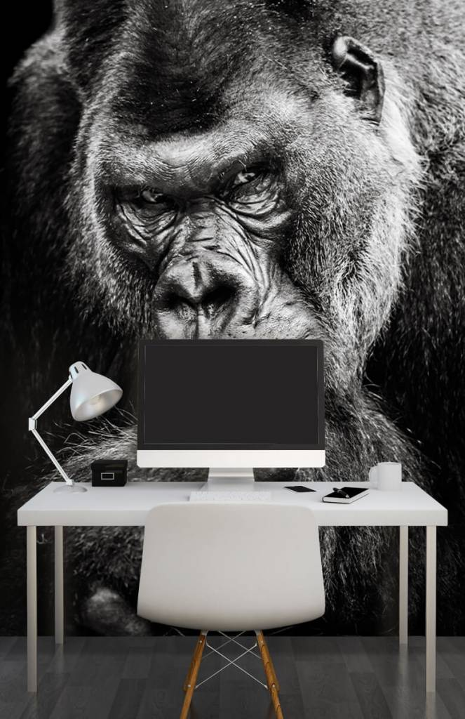 Zwart Wit behang - Close-up foto van een gorilla - Tienerkamer 6
