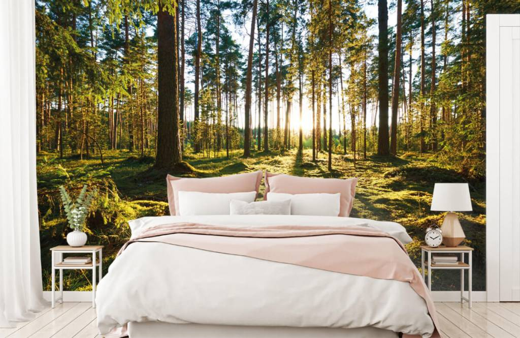 Bos behang - Dennenbos - Slaapkamer 3